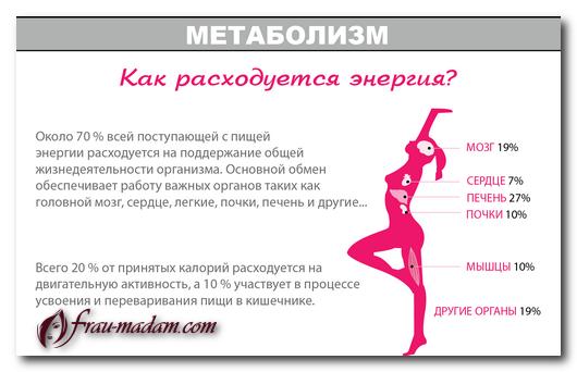 таблица метаболизма