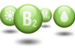 какой витамин В2 лучше и эффективнее