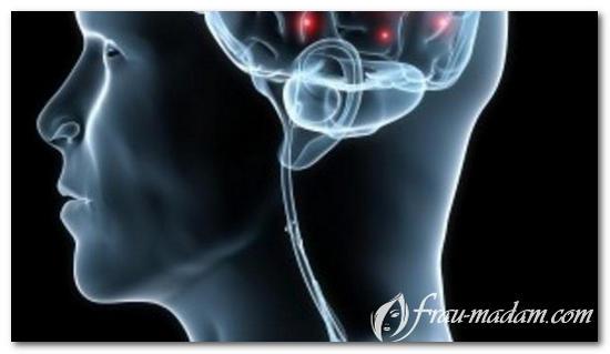 Витамины группы В имеют важное значения для процесса обмена веществ, функционирования нервной системы, метаболизма белков, клеточного деления